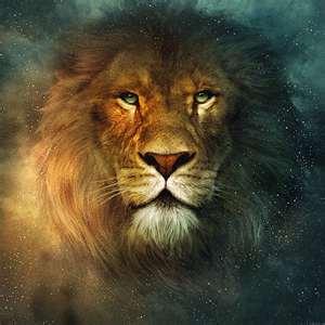 Lion, Aslan